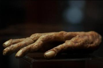 Hand of Glory - Supernatural Fan Site